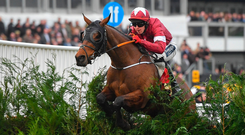 Tiger Roll and Keith Donoghue sail over the last on their way to winning the Cross Country Chase at Cheltenham yesterday. Photo by Seb Daly/Sportsfile