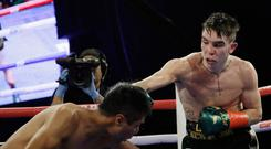 Ireland's Michael Conlan, right, punches Mexico's Ruben Garcia Hernandez during the sixth round of a featherweight boxing match Sunday, March 17, 2019, in New York. Conlan won the fight. (AP Photo/Frank Franklin II)