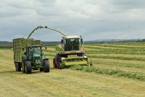 A Teagasc survey in January revealed that 25pc of farmers nationally are currently short of silage
