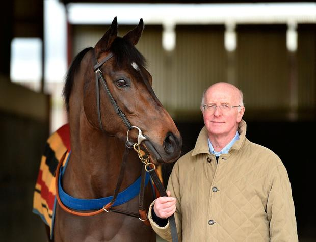 Trainer John Oxx with his Filly Skitter Skater during the launch of 2019 Flat Season at John Oxxs Currabeg Stables in Currabeg, Co Kildare. Photo by Matt Browne/Sportsfile