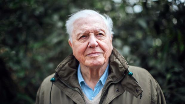 Sir David Attenborough will present the climate change documentary (Polly Alderton/BBC/PA)