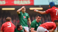 Conor Murray has struggled for form since returning from injury. Photo by Ramsey Cardy/Sportsfile