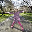 Park life: Katie Maher (4), from Birr, walks through the cherry blossom in Birr Castle gardens, Co Offaly. Photo: Damien Eagers