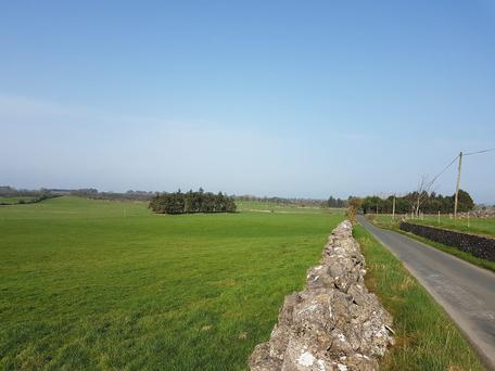 A view of part of the 67ac holding for sale near Claremorris.