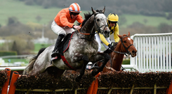 Riding high: Labaik, ridden by Ruby Walsh, jumps the last fence on the way to winning the Supreme Novices' Hurdle in 2017. Photo: Sportsfile
