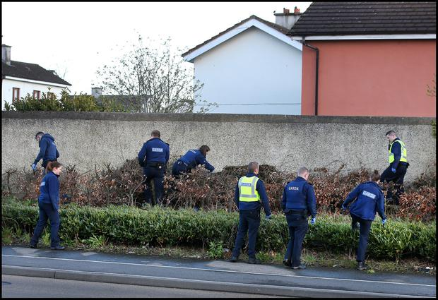 Gardai search across the road from Riversdale Community College in Blanchardstown following the shooting. Pic Steve Humphreys