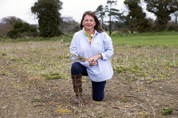 Pick of the crop: Marita Collins with Asparagus from her farm in Baltray. Photo: Tony Gavin