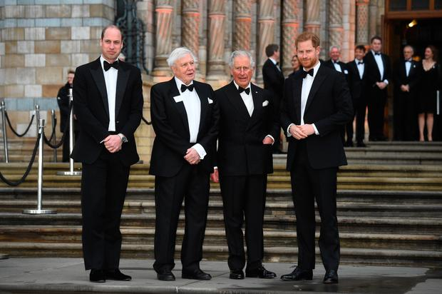 (Left to right) The Duke of Cambridge, Sir David Attenborough, the Prince of Wales and the Duke of Sussex arrive to attend the global premiere of Netflix's 'Our Planet' at the Natural History Museum in Kensington, London