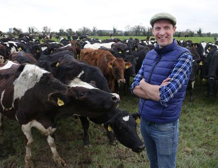 21/3/2019, Darragh McCullough pictured on his farm in Stamullen, Co. Meath. Picture credit; Damien Eagers / INM