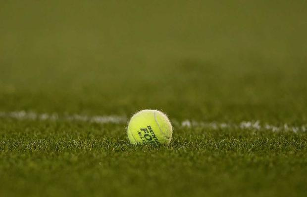 Tennis ball protests in the Galway v Limerick game on Friday night