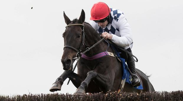 Patrick Mullins: 'Lottery won the first and I can only hope my numbers come up with the 'Don''