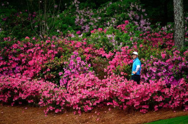 "Rory McIlroy should note Bernhard Langer's assertion that ""winning the Masters is more about iron play"". Photo: Charles Laberge/Augusta National via Getty Images"