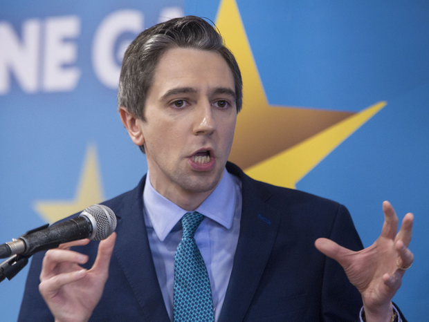 SIMON HARRIS: Just what is a minister for anyway?