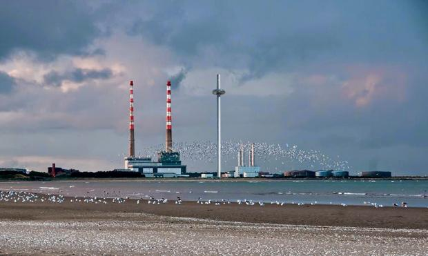 High ambition: Developer Harry Crosbie wants to build a major tourist attraction at the Poolbeg site