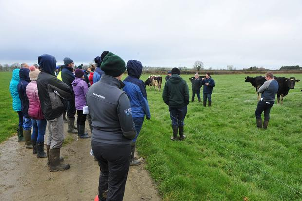 Peter Young talks to the group during Teagasc Organic Dairy Farm Walk. Photo Roger Jones.