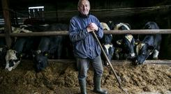Joe Carroll on his Farm outside Kilcormac ,Offaly ,his Wife is in a Nursing Home.