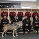 Saracens and the 'Wolfpack' will be aiming to be top dogs on Saturday