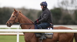 Samcro and regular rider Shane McCann at Cullentra House stables
