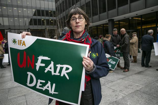 Caroline ,IFA Farm Family and Social Affairs Chairwoman at the IFA Fair Deal protest at the Dept of Health in Baggot St .