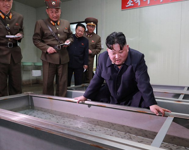 Advice: North Korean leader Kim Jong-un gives guidance during his visit to the Shinchang Fish Farm. Photo: Reuters