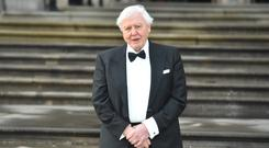 Sir David Attenborough offers a stark warning in Climate Change: The Truth (Kirsty O'Connor/PA)