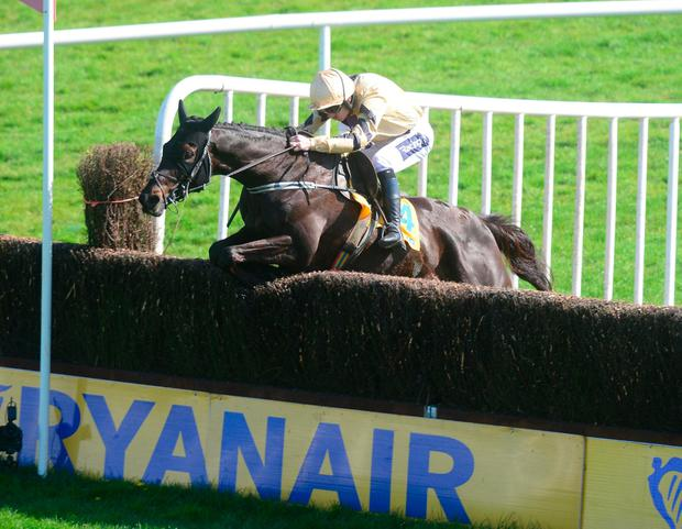 Cruise control: Voix Du Reve and Ruby Walsh sail over the final fence on their way to victory in the Ryanair Chase. Photo: PA Wire.