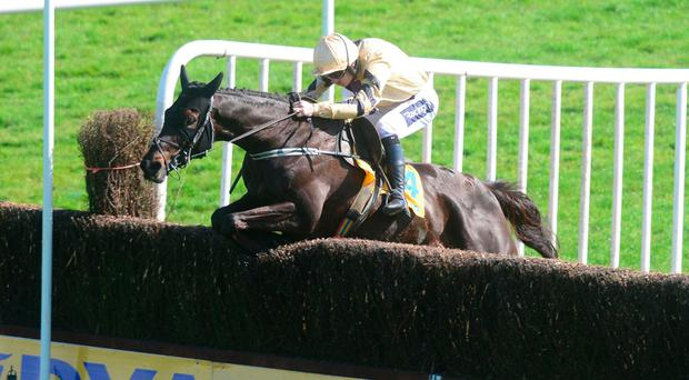 Walsh-Mullins axis flying high after Voix Du Reve Ryanair romp