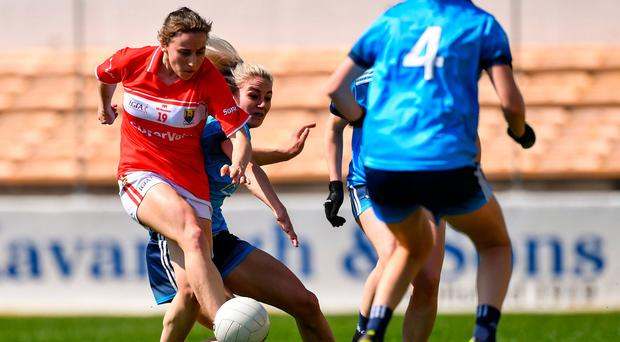 Fitzgerald senses return to glory after seeing off Dubs