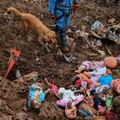 Manuel Bermudez, member of the Colombian Red Cross and his dog Gretta, search for victims amid dolls after a landslide in Rosas, Valle del Cauca department, in southwestern Colombia, on April 21, 2019.. (Photo by LUIS ROBAYO / AFP)LUIS ROBAYO/AFP/Getty Images