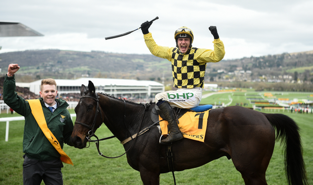 Cheltenham Racing Paul Townend celebrates on Al Boum Photo after winning the Magners Cheltenham Gold Cup Chase on Day Four of the Cheltenham Racing Festival at Prestbury Park in Cheltenham, England. Photo by David Fitzgerald/Sportsfile