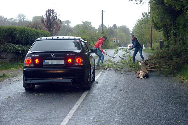 Quick thinking motorists clear the roadway after a fallen tree blocked the main Killarney to Dingle road at Aghadoe, Killarney during the height of Storm Hannah yesterday evening. Photo: Don MacMonagle