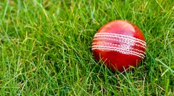 'The fast scoring came at the end from Tyrone Kane who scored 85 from 58 balls, with five sixes, and James Hitchcock with 40 from just 22 balls.' Photo: Stock Image