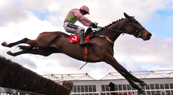 Min and Ruby Walsh up on their way to victory at Punchestown last December – the pair can strike again. Photo by Seb Daly/Sportsfile