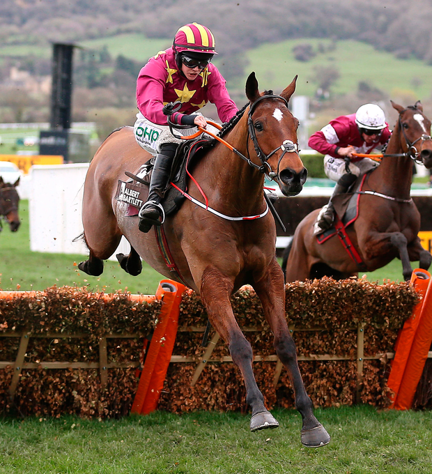 Minella Indo ridden by Rachael Blackmore on their way to victory at the Albert Bartlett Novices' Hurdle during Gold Cup Day of the 2019 Cheltenham Festival.