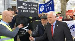 Independent Junior Minister Finian McGrath, who posed with a bull brought along by protesting farmers. Photo: Seán Defoe, Newstalk