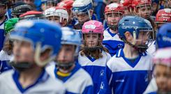 Teaming up: Members of Kevin's Hurling and Camogie Club, who held a flash mob in St Patrick's Park in Dublin 8, to highlight the lack of green space and sporting facilities in the area. Photo: Mark Condren