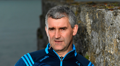 Tipperary hurling manager Liam Sheedy. Photo by Harry Murphy/Sportsfile