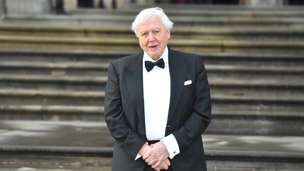 Sir David turned 93 on Wednesday (Kirsty O'Connor/PA)