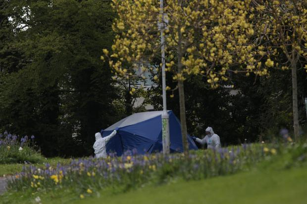 Garda appeal for information following fatal stabbing of a teenager in Dublin