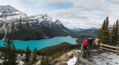 Peyto Lake in the Canadian Rockies offers spectacular views
