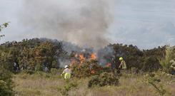 Crews from Ennis fight a gorse fire near Ruan, Co Clare. Photo: Press 22