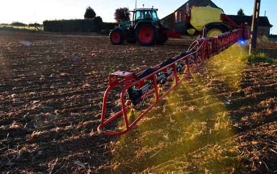 The European Chemicals Agency and other regulators around the globe have also found glyphosate not likely to be carcinogenic to humans. Photo: AFP/Getty Images