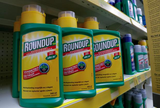 Monsanto's Roundup weedkiller atomizers are displayed for sale at a garden shop near Brussels, Belgium November 27, 2017. REUTERS/Yves Herman/File Photo