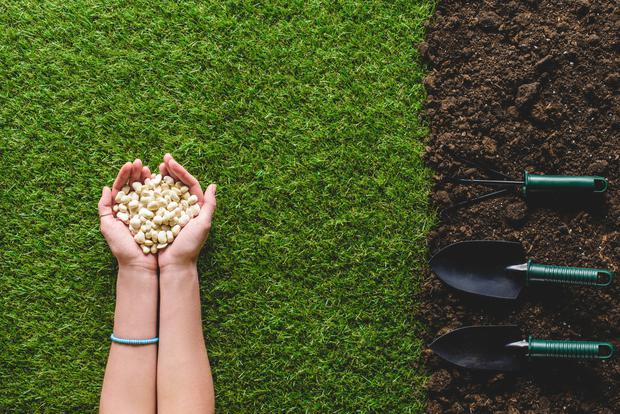 There's a growing demand for gardening maintenance and landscaping services and you could set up a basic gardening business for less than €1,000 - depending on the type of equipment and tools you need