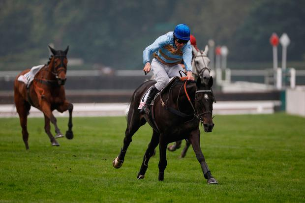 Irish jockey Davy Russell riding Carriacou sprint to the finish to win the 141st edition of the Grand Steeple- Chase de Paris