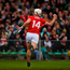 Rebel hotshot: Patrick Horgan of Cork celebrates after scoring his side's goal against Limerick yesterday. Photo: Sportsfile
