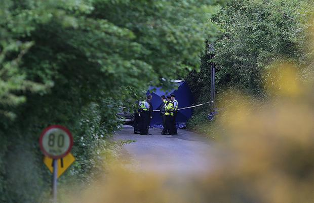 Gardai and detectives at the scene of a shooting at Walshestown. Picture credit; Damien Eagers / INM