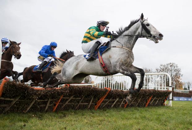TIPPED TO WIN: Bay Hill winning at Thurles. Photo: Patrick McCann/Racing Post