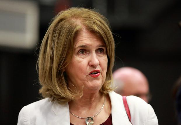 Harrowing tales: Joan Burton said TDs were being told businesses were under threat due to high insurance costs. Picture: Frank McGrath