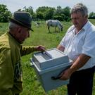 Antal Matyus, left, casts his vote as election official Bela Deak holds a moblie urn during the European elections at his farm in Szentkiraly, Hungary, Sunday, May 26, 2019. The European Parliament election is held by member countries of the European Union (EU) from 23 to 26 May 2019. (Sandor Ujvari/MTI via AP)